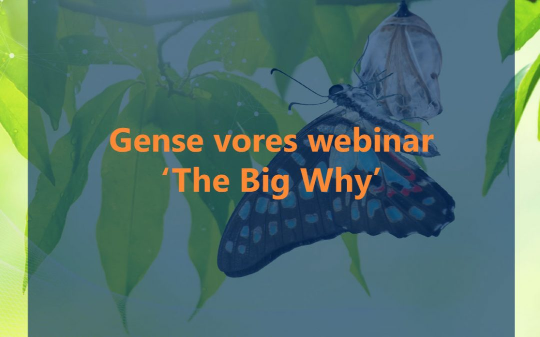 The Big Why webinar 04.06.2020